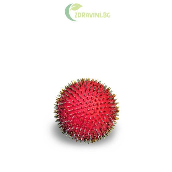 Ляпко акупунктурна иглена топка - стъпка 4,0 - сребро